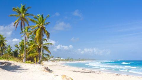 Dominikana + Miami