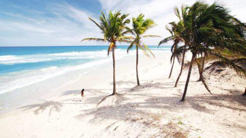 Kuba + Miami