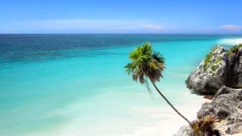 Kuba – Cayo Coco