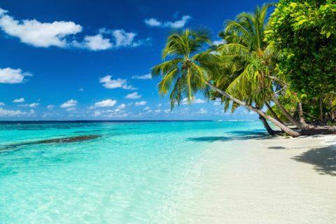 Australia + Malediwy